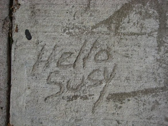 hello suzy